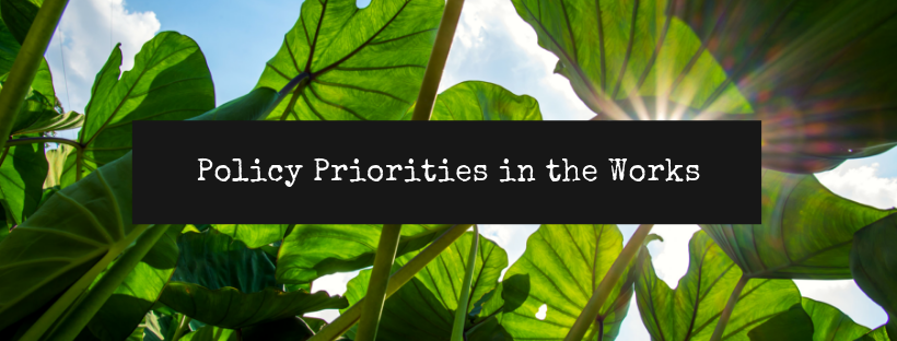 Policy Priorities in the Works header